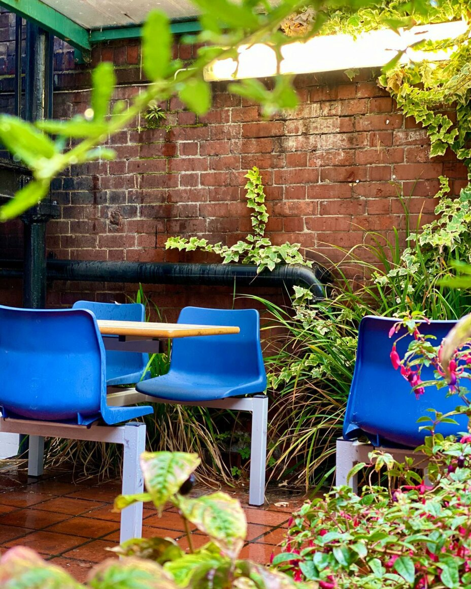 On a rainy day, Louise House offers you an oasis of tranquility where you can take it all in 🌧️ . . . rainyday garden rain studentlife studenliving studentlifestyle