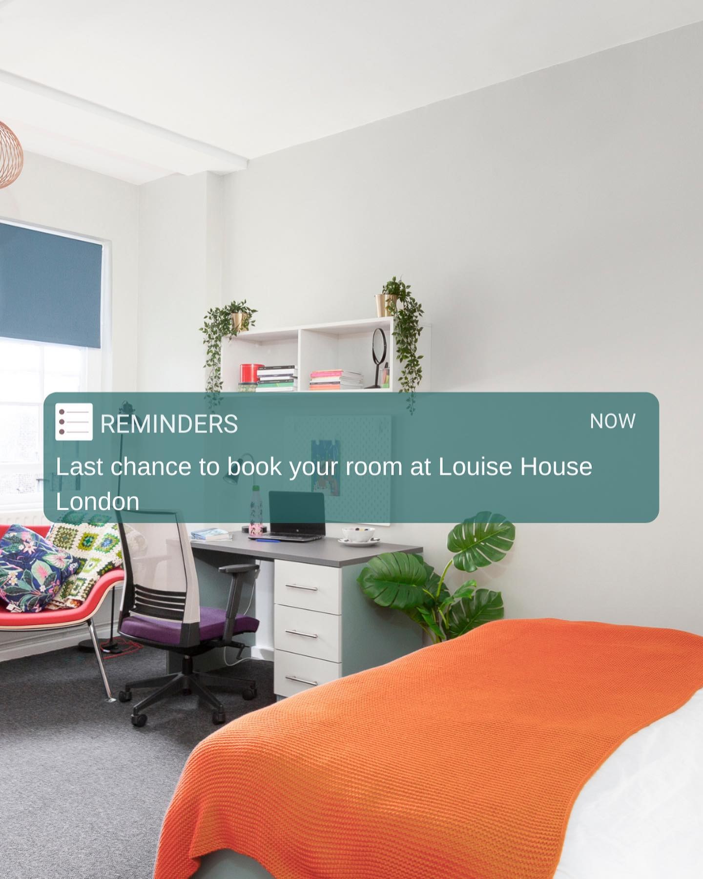 🤓 Friendly reminder from the top student accomodation in Central LondonBook Deluxe Room now 🏻 only limited number of rooms are available.